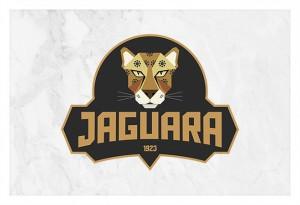 bairro-jaguara-identidade-sp